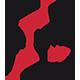Insight&Co. Logo